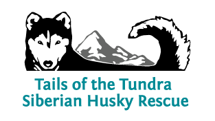 Tails of the Tundra Siberian Husky Logo