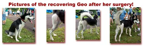 Geo recovery from her surgery