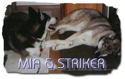 Mia & Striker